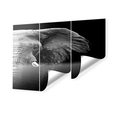 myposter Bild Elefanten Fototapeten im Format 180 x 120 cm