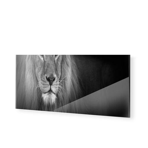 myposter Löwe Panorama Glasbilder als Panorama im Format 150 x 60 cm