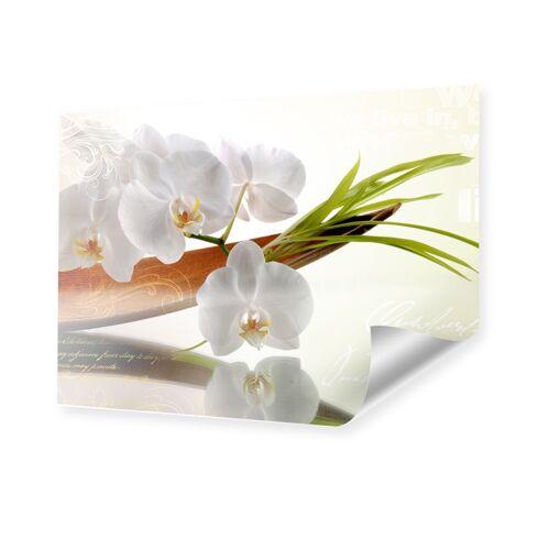 myposter Bild Orchideen Poster im Format 80 x 60 cm