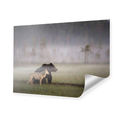 myposter Bild Bär und Wolf Poster im Format 90 x 60 cm