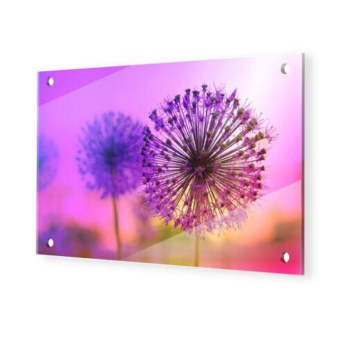 myposter Pusteblume Glasbilder XXL im Format 105 x 70 cm