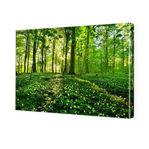 myposter Waldbilder Bilder auf Leinwand im Format 150 x 100 cm