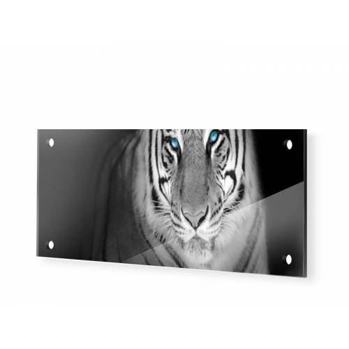 myposter Tiger Panorama Glasbilder als Panorama im Format 150 x 60 cm