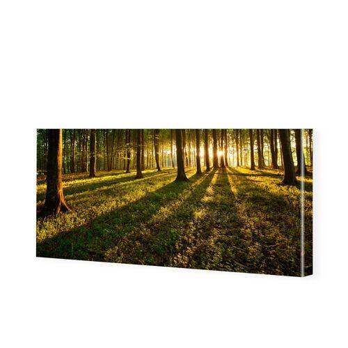 myposter Wald Bild Panorama Leinwand als Panorama im Format 175 x 70 cm