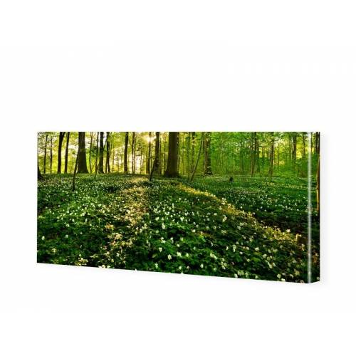 myposter Waldbilder Leinwandbild als Panorama im Format 200 x 100 cm