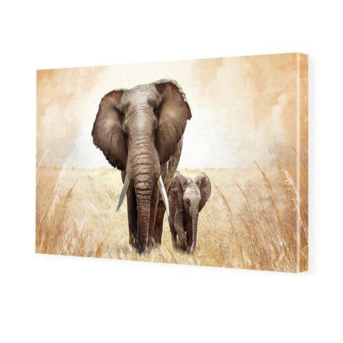 myposter Bilder von Elefanten Foto auf Leinwand im Format 80 x 60 cm