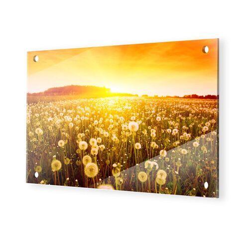 myposter Pusteblume Bild Glasbilder XXL im Format 120 x 80 cm