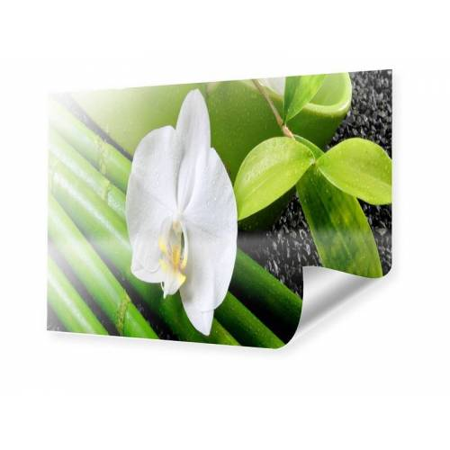 myposter Poster Orchidee Poster im Format 40 x 30 cm
