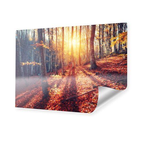 myposter Herbstlicht Poster im Format 150 x 100 cm
