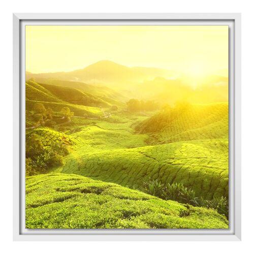 myposter Foto auf Forex im Schattenfugen Rahmen in weiß im Format 90 x 60 cm