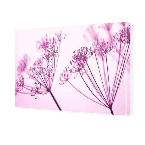 myposter Blütenbild Bilder auf Leinwand im Format 150 x 100 cm