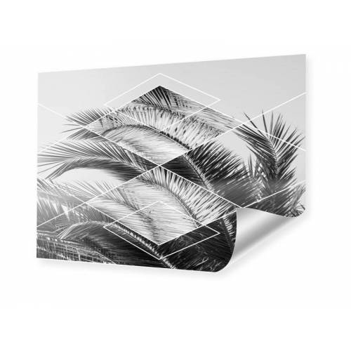 myposter Geometric Palm Leaves Poster im Format 75 x 50 cm
