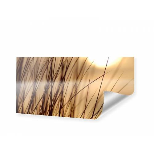 myposter Gras Foto Poster als Panorama im Format 140 x 70 cm