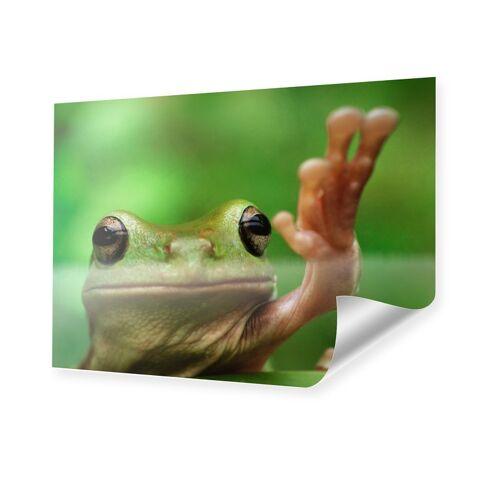 myposter Frosch Bild Poster im Format 80 x 60 cm