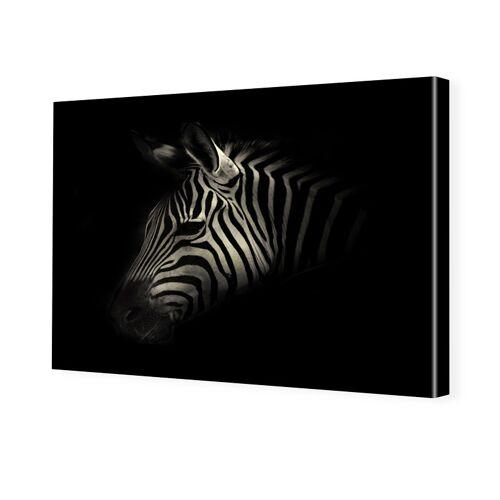 myposter Zebra Portrait Foto auf Leinwand im Format 80 x 60 cm