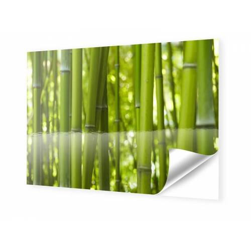 myposter Bambusbilder Fotos auf Folie im Format 90 x 60 cm