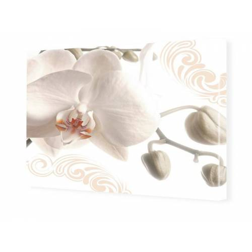 myposter Bild Orchidee Foto auf Leinwand im Format 80 x 60 cm