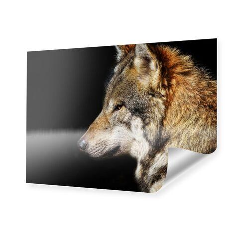 myposter Wolf Bild Poster im Format 80 x 60 cm