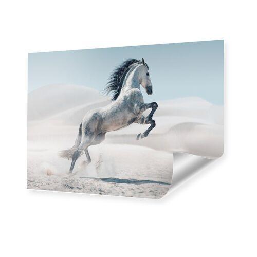 myposter Pferd Bild Poster im Format 32 x 18 cm