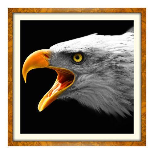 myposter Foto auf Künstlerpapier im Wurzelholz Holzrahmen im Format 64 x 36 cm