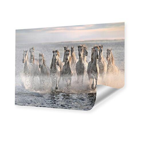 myposter Pferde Foto XXL Poster im Format 140 x 105 cm
