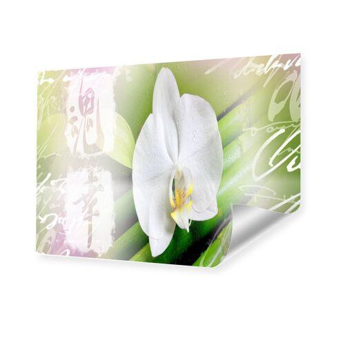 myposter Zen Orchidee Poster im Format 50 x 40 cm