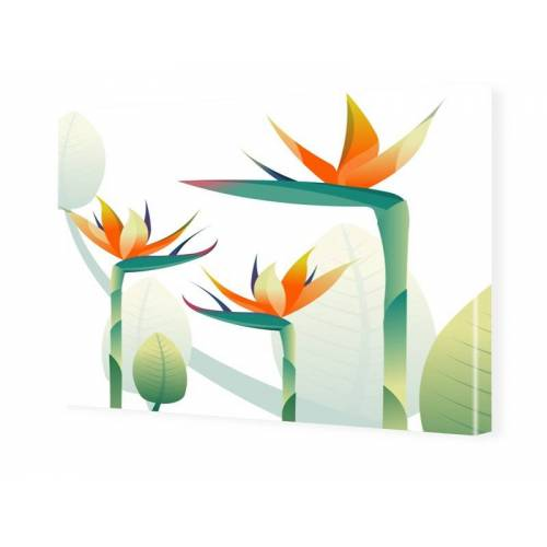 myposter Paradiesvogelbluete Fotoleinwand im Format 60 x 40 cm