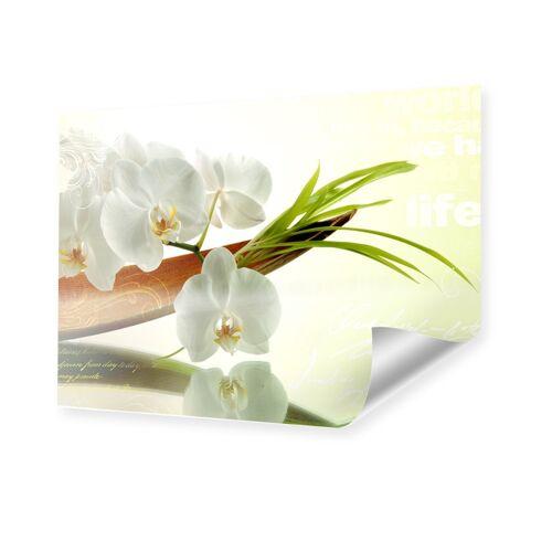myposter Bild Orchideen Poster im Format 60 x 45 cm