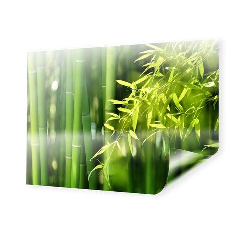 myposter Bambusbild Backlit Folie im Format 90 x 60 cm