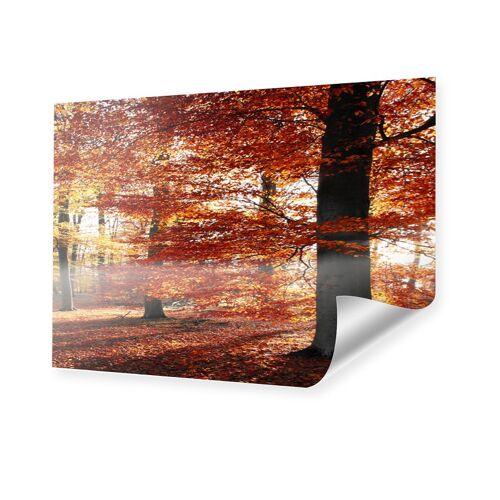 myposter Herbstbild Poster im Format 70 x 50 cm
