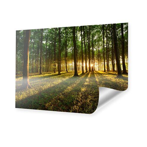 myposter Wald Bild XXL Poster im Format 120 x 90 cm