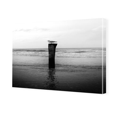 myposter Bilder Möwe Bilder auf Leinwand im Format 150 x 100 cm