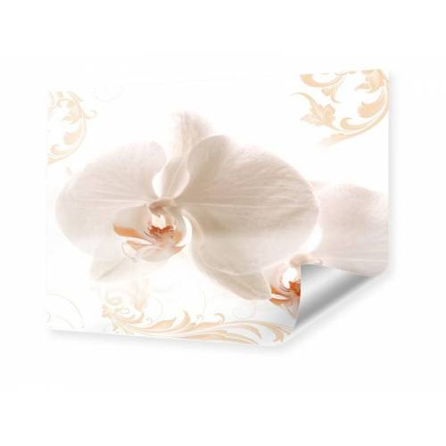 myposter Foto Orchidee Poster im Format 80 x 60 cm