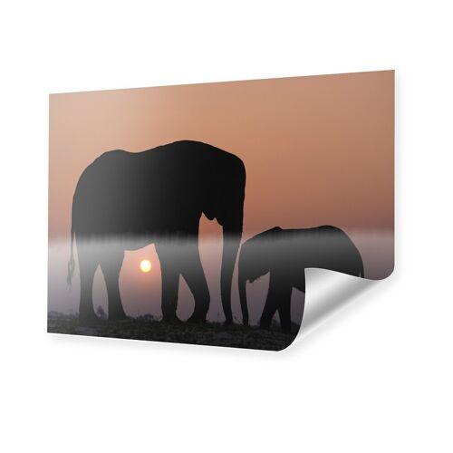 myposter Tiere im Sonnenuntergang Poster im Format 100 x 70 cm
