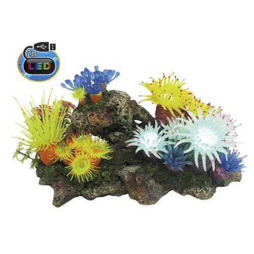 Nobby Aqua Ornaments APLYSINA mit Pflanzen, mit LED Aquarium Deko, 27,7 x 14,3 x 14,0 cm