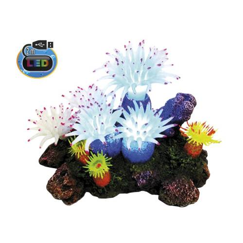 Nobby Aqua Ornaments APLYSINA mit Pflanzen, mit LED Aquarium Deko, 16,5 x 12,0 x 11,0 cm