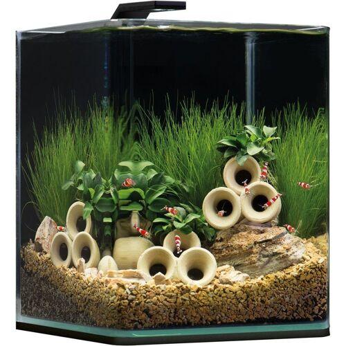 Dennerle NanoCube Aquarium, 10 Liter