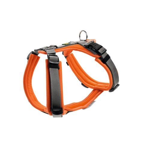 Hunter Hundegeschirr Maldon gepolstert, Gr. XS: Hals 31 - 49 cm   Bauch 34 - 49 cm   Breite 1,5 cm, orange/grau 67515