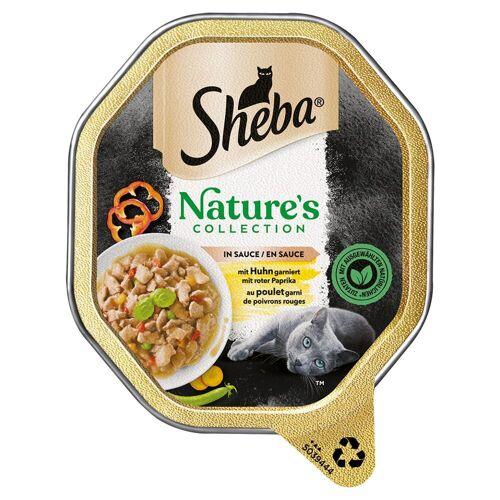 Sheba 22x 85g Sheba Nature´s Collection in Sauce mit Huhn Katzenfutter nass