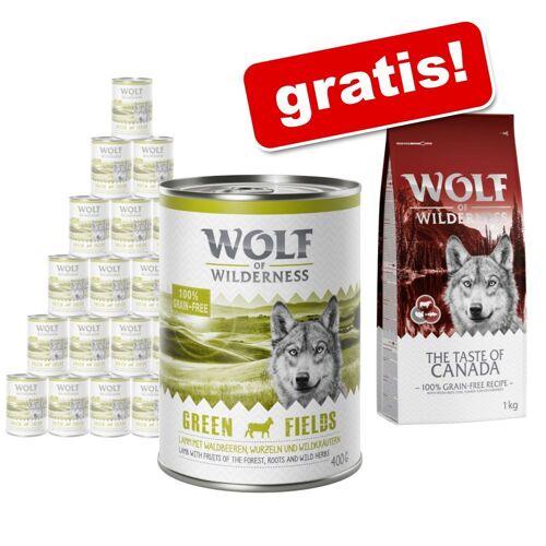 Wolf of Wilderness: Nassfutter 24 x 400 g + 1 kg Trockenfutter gratis! - Wild Hills - Ente (Wurst)
