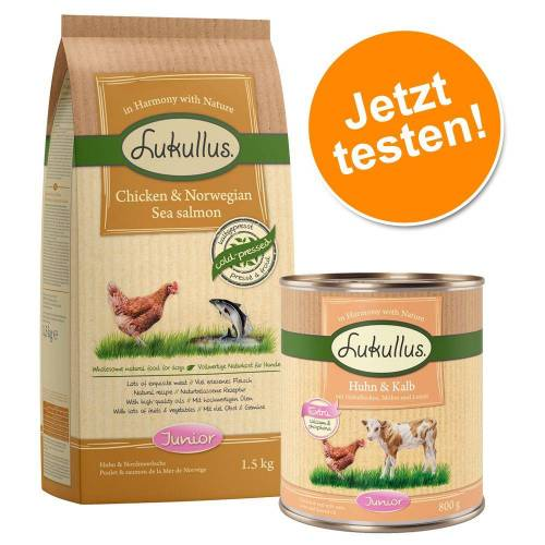 Lukullus 1,5kg+6x400g Huhn&Kalb Lukullus Welpenpaket Hundefutter trocken & nass
