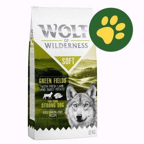 Wolf of Wilderness 12 kg Wolf of Wilderness getreidefreies Trockenfutter