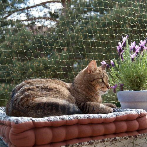 zooplus Exclusive Katzenschutznetz mit Drahtverstärkung, 2 x 3 m