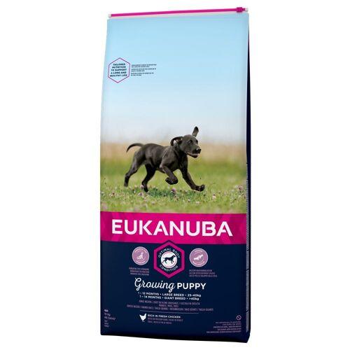Eukanuba 3kg Puppy Large Breed Huhn Eukanuba Growing Hundefutter trocken