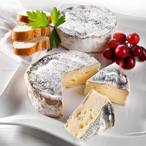 Käse Trüffel Camembert, im Stück