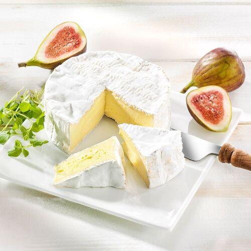 Käse Camembert d'Isigny Bio, im Stück