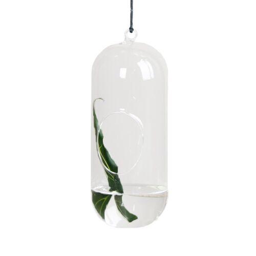 DBKD Blumenampel aus Glas large