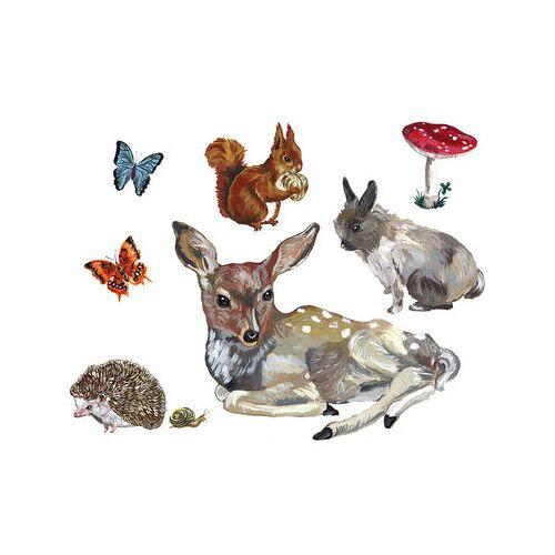 Domestic Les animaux 1 Sticker Set mit 8 Stickern - Domestic - Bunt