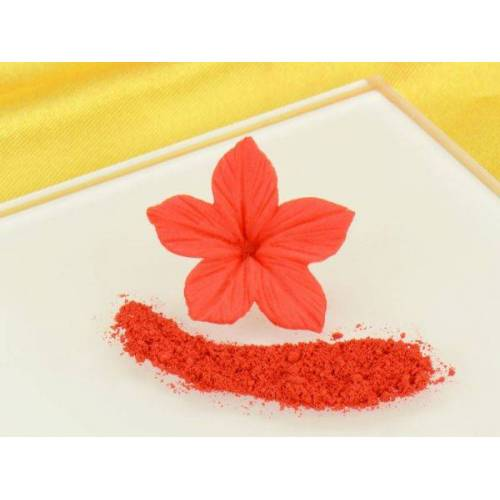 Rainbow Dust Puderfarbe Poppy Red 2,5g