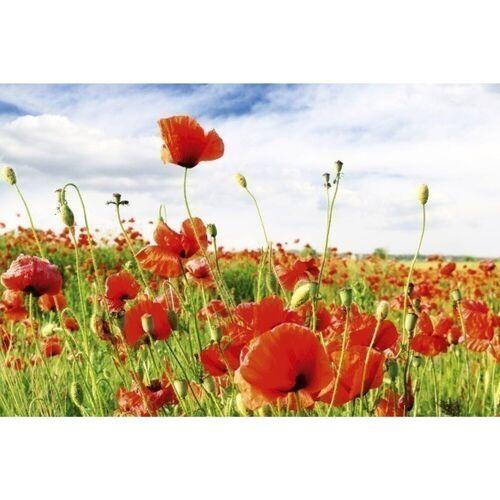 Fototapete RED POPPIES   MS-5-0090   Rot   Digitaldruck auf...